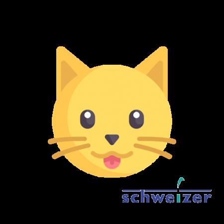 Schweizer Chats