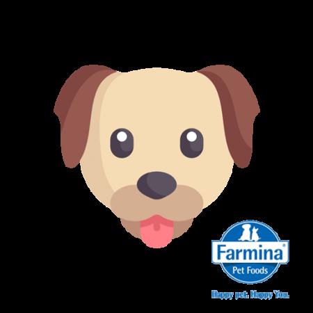Farmina Chien
